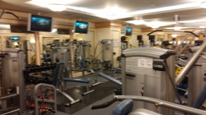Main exercise area.