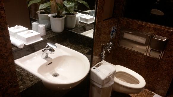 Bathroom in NRT shower room