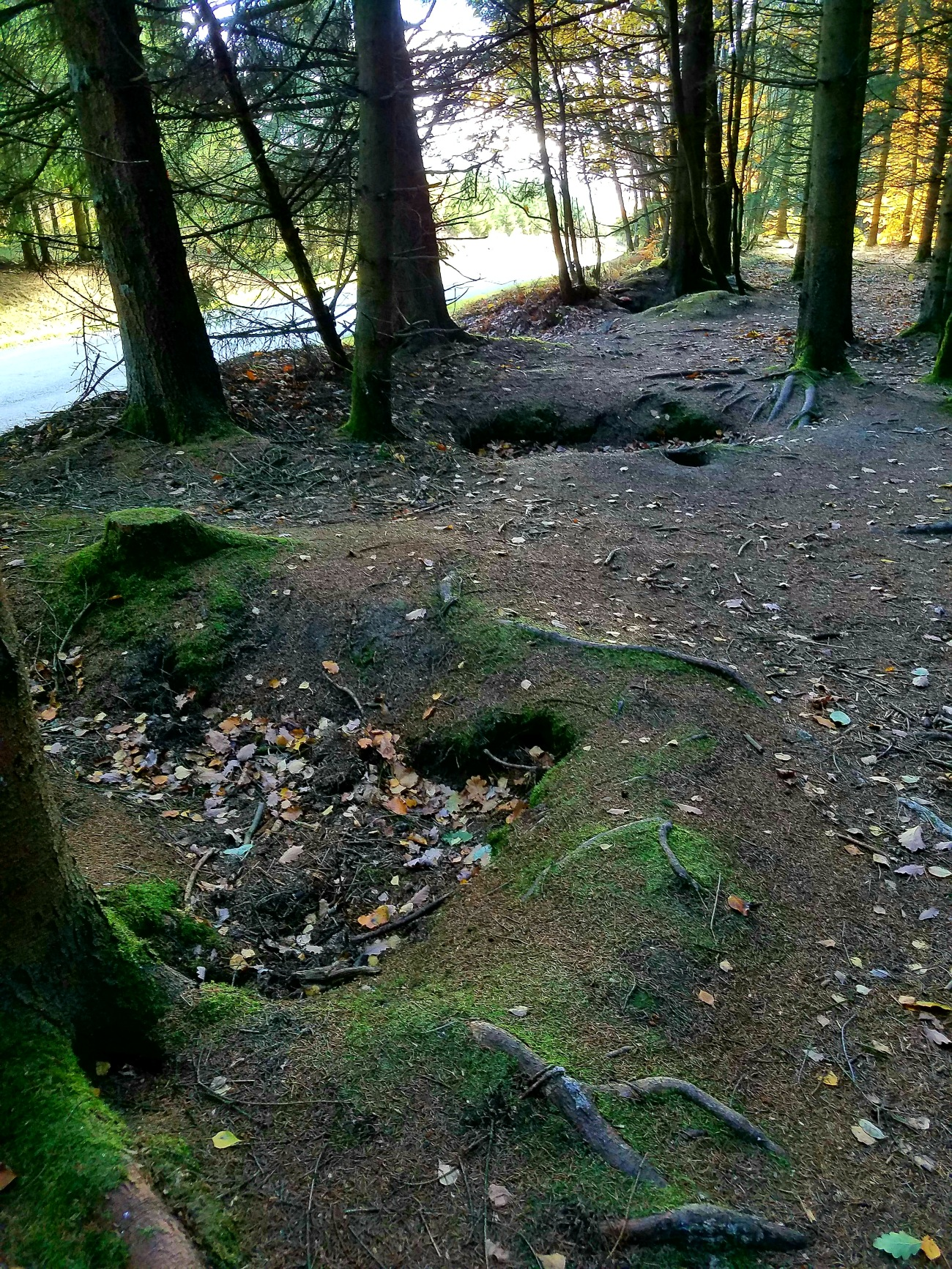 Foxholes from the Battle of the Bulge