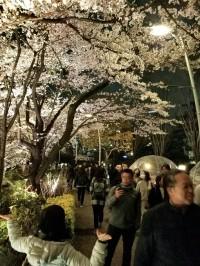 A walkway in Roppongi across from the Ritz Carlton hotel.