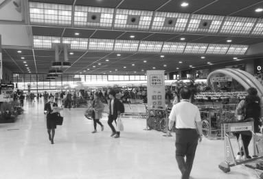 Narita Terminal 1